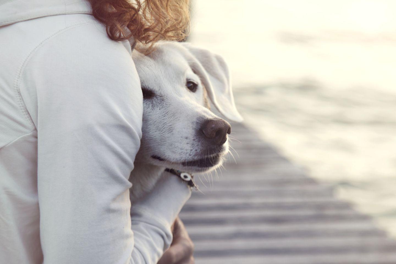 Hund mit Frauchen