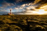 Salzwiesen und Westerhever Leuchtturm