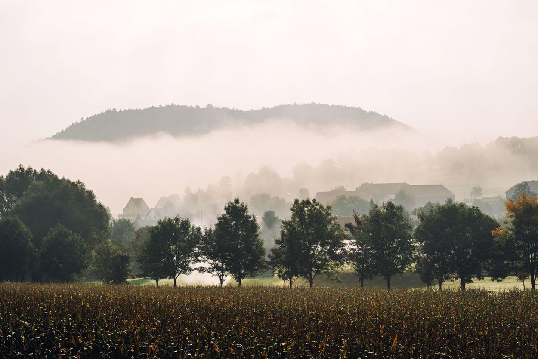 Papstdorf im Nebel