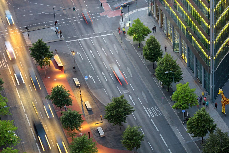 Bäume in Berlin