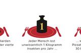 Novel Food-Verordnung: Werden Mehlwürmer und Maden den europäischen Markt erobern? - Bild 2