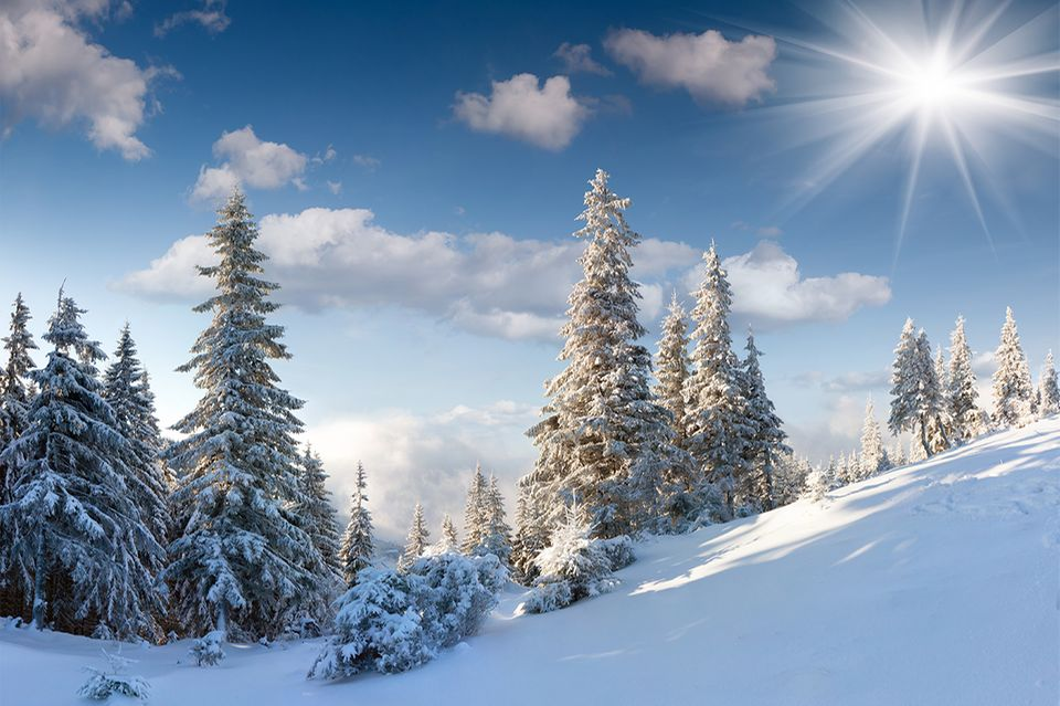 Weiße Schneelandschaft