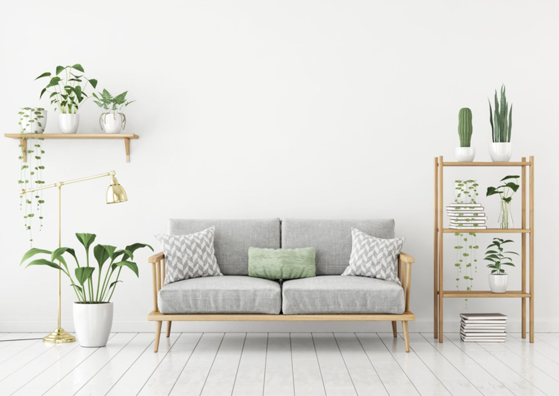 Sofa mit Pflanzen