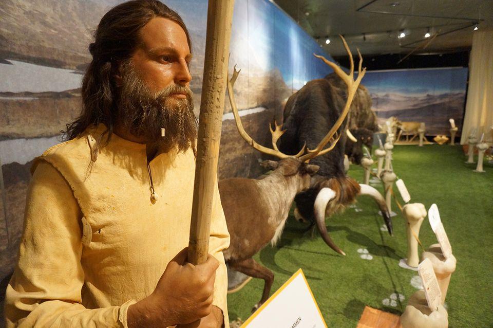 Eiszeitsafari im Neanderthalmuseum