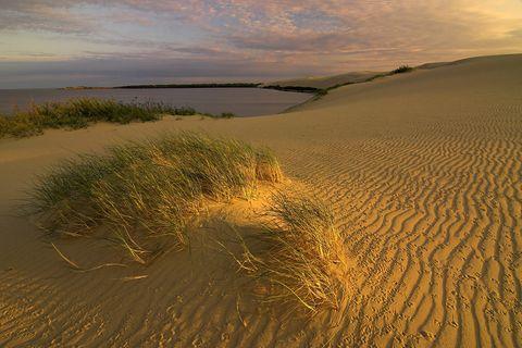 Litauen, Nida, 'Große Düne', Nationalpark Kurische Nehrung