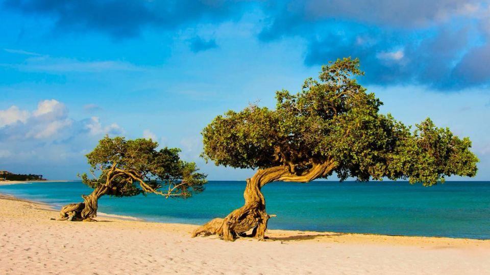Karibikinsel