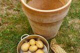 Kartoffelwasser