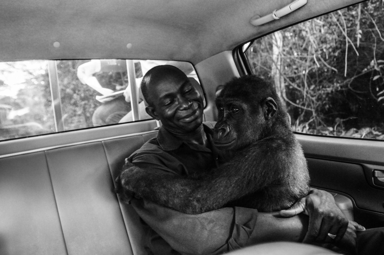Jo-Anne McArthur/Wildlife Photographer of the Year