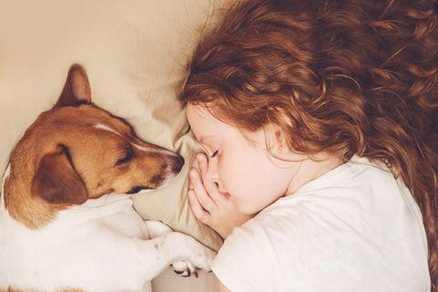 Hund und Mädchen schlafen