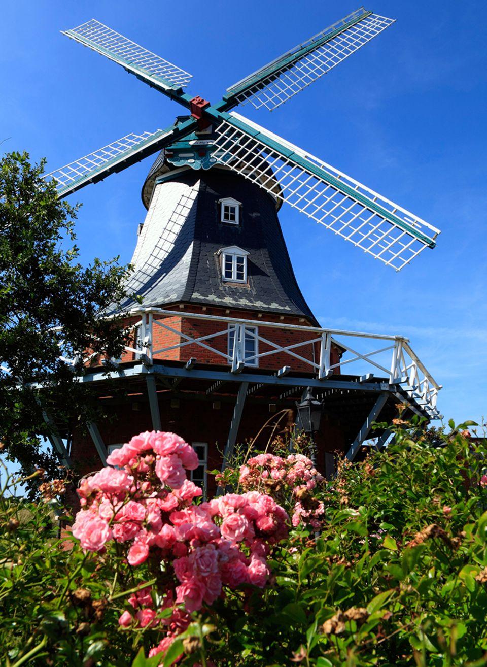 Windmühle, Borgsum, Foehr