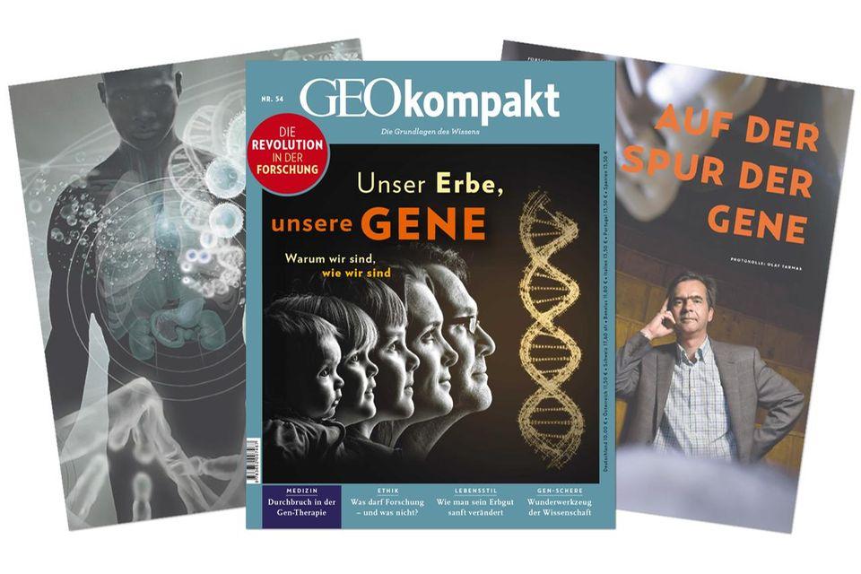 GEO kompakt - Unser Erbe, unsere Gene