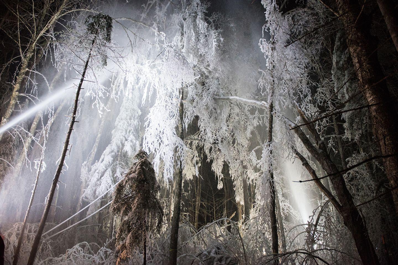 Ice Storm Experiment, Hubbard Brook