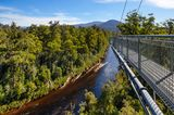 Tahune Forest AirWalk,