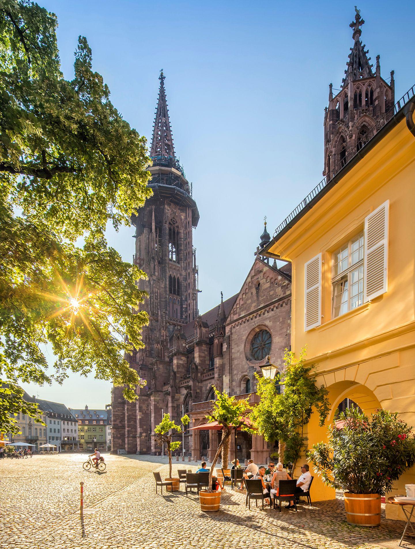 Münster, Freiburg