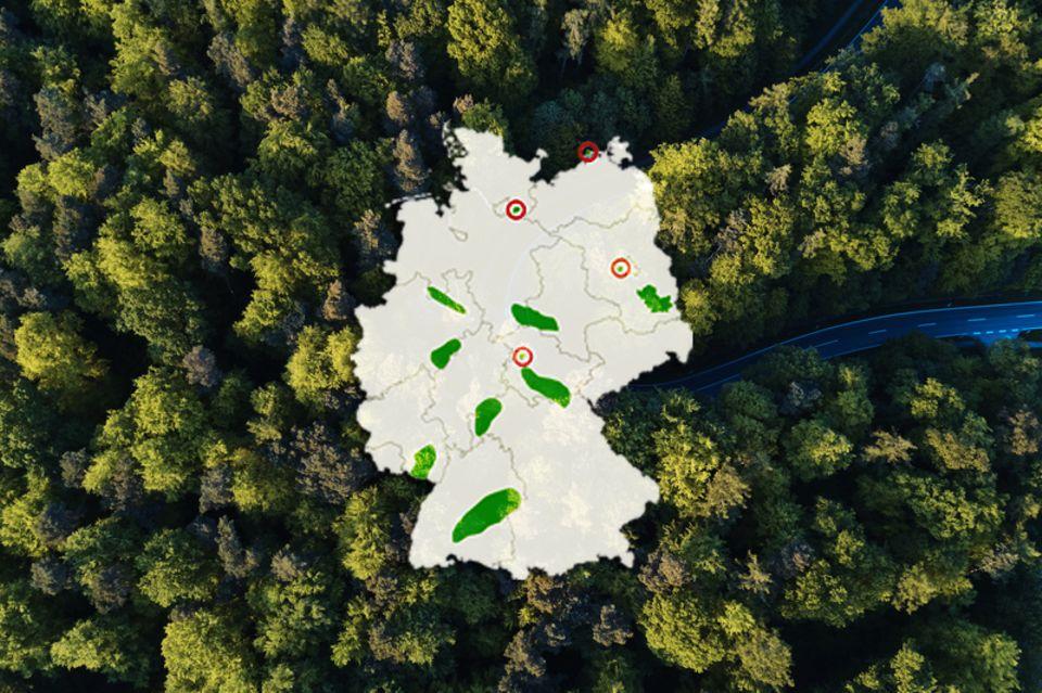 Wälderquiz