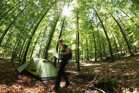 Trekking, Naturpark Schwarzwald Mitte/Nord