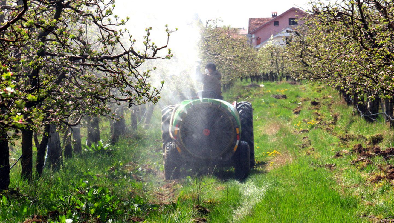 Apfelplantage, Pestizide