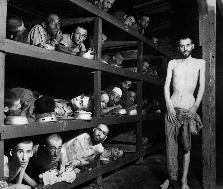 Auschwitz, Überlebende