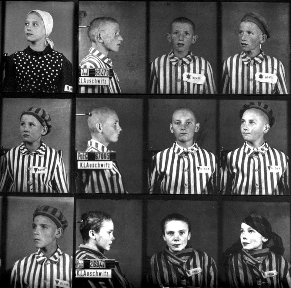 Häftlinge, Auschwitz