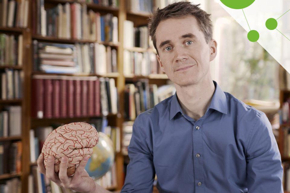 Wunderwelt: Gehirn: Die GEO-Videokolumne mit Henning Beck