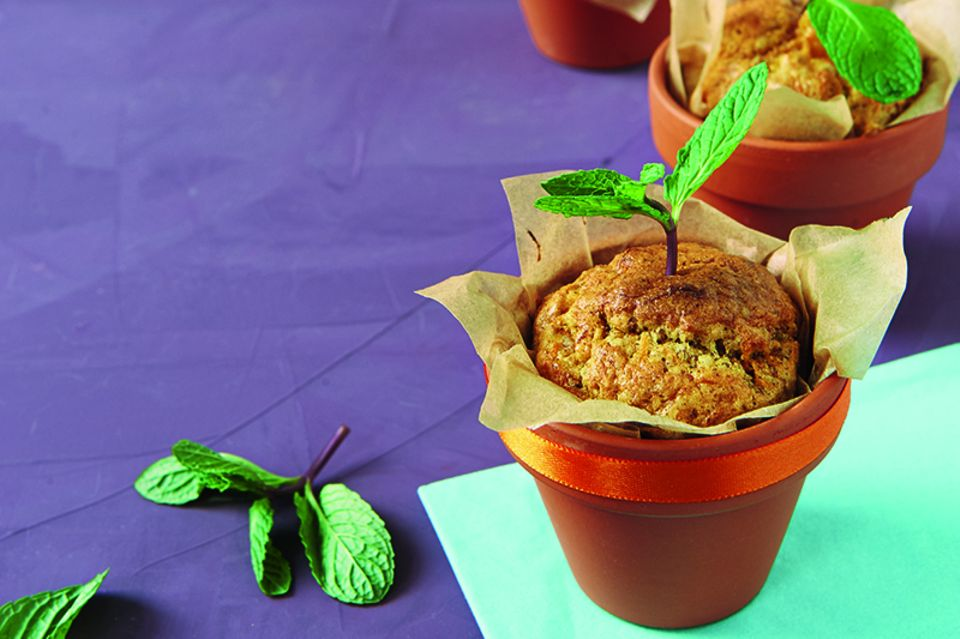 Kuchen im Blumentopf