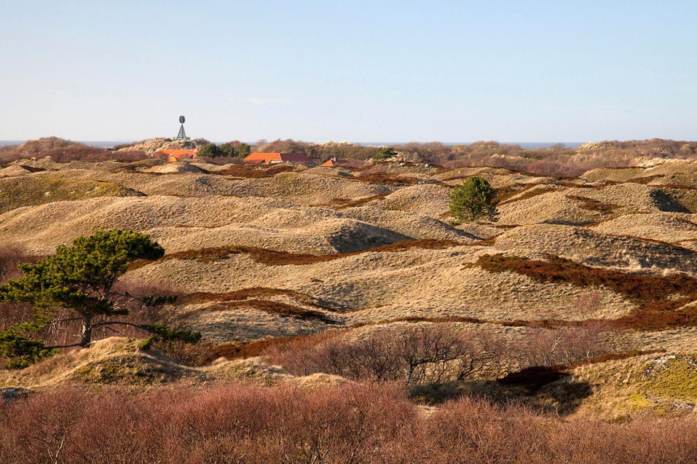 Dünenlandschaft, Insel Spiekeroog