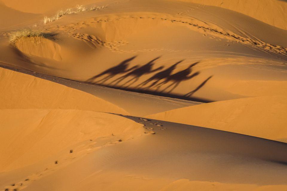 Fata Morgana in der Wüste