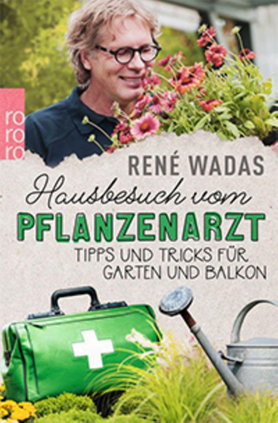 """Pflanzenkunde für Anfänger: Die Tipps stammen aus dem Buch """"Hausbesuch vom Pflanzenarzt"""" von René Wadas, soeben erschienen im Rowohlt Verlag"""