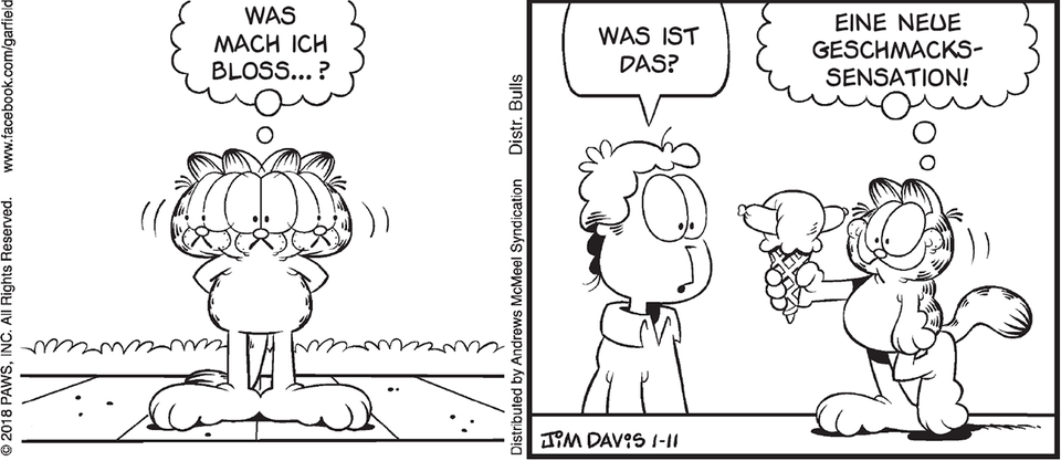 Garfield Tages-Strip