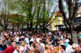 Biergarten auf dem Viktualienmarkt, München, Bayern,