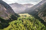Der große Ahornboden, Bayern