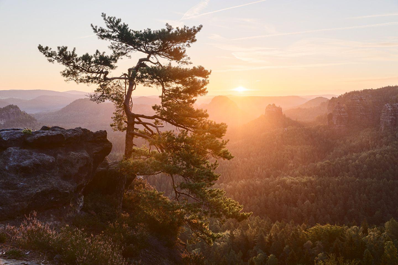 Sächsische Schweiz, Gleitmannshorn