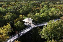 Baumkronenpfad Nationalpark Hainich