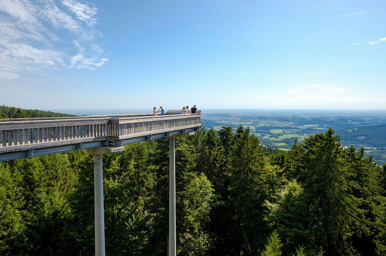 Waldwipfelweg, St. Englmar, Bayerischer Wald