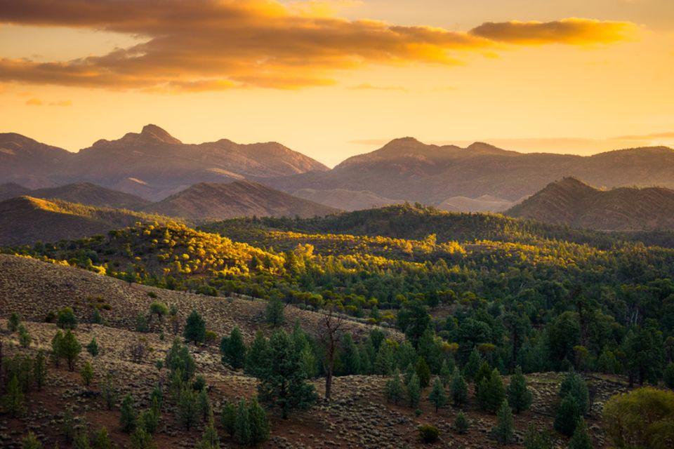Flinders Ranges, Australien