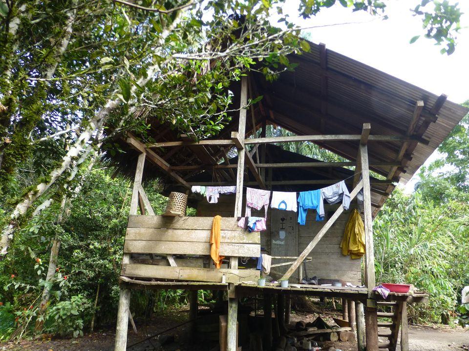 Ecuador: Die Projektbegünstigten leben im Regenwald von Napo, weitgehend in Einklang mit der Natur