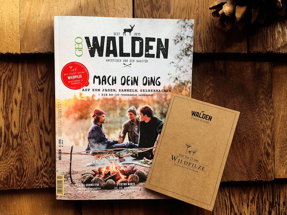 Walden + Field Guide