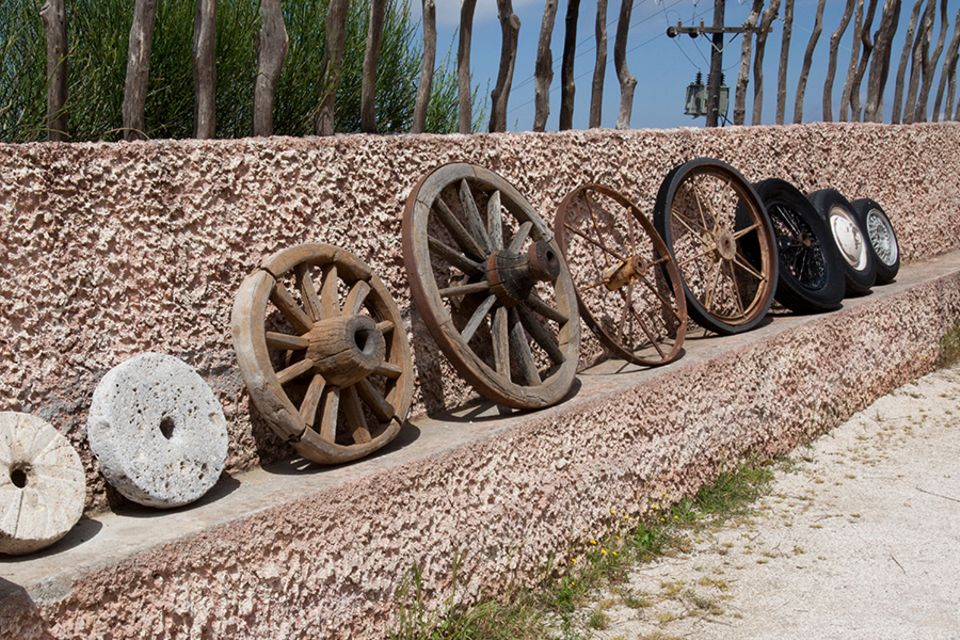 Erfindung des Rades