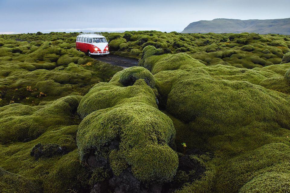 Roter Bulli auf Island