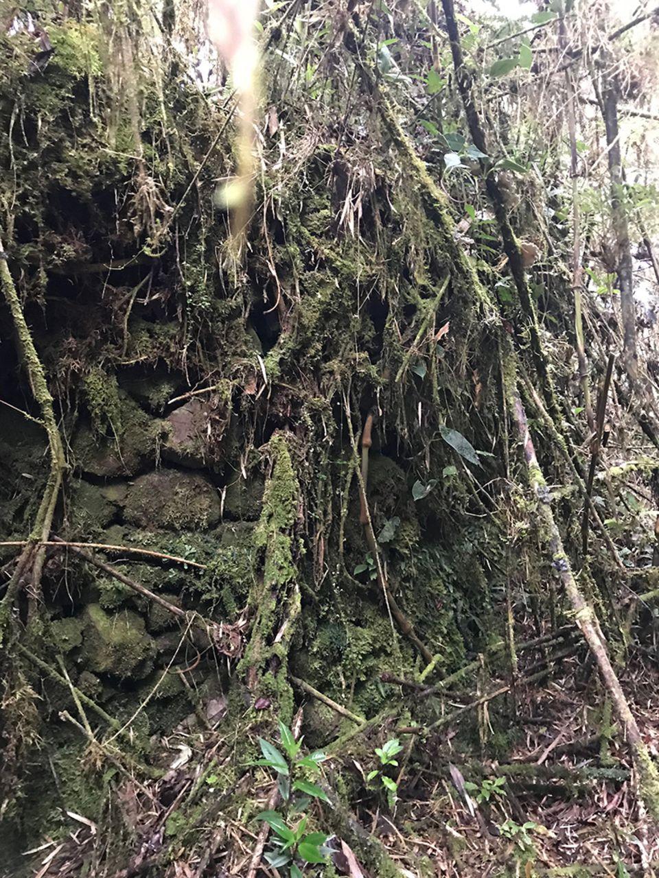 Fundstätte einer Siedlung der Chachapoya