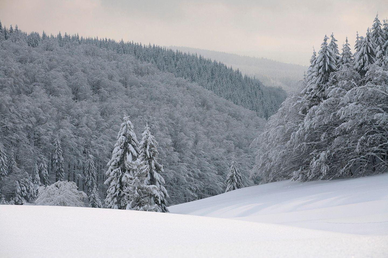 Masserberg Thüringer Wald