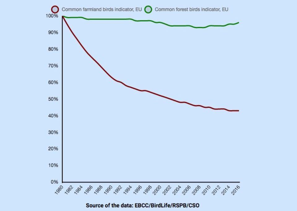 Grafik zum Vogelsterben in der EU