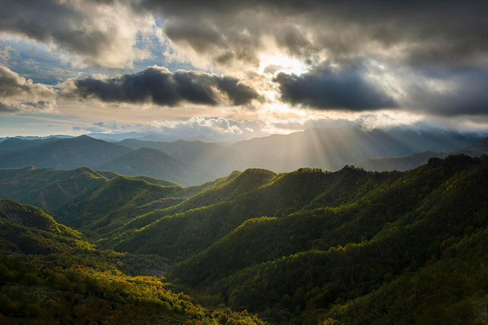 Nationalpark Foreste Casentinesi, Emilia Romagna