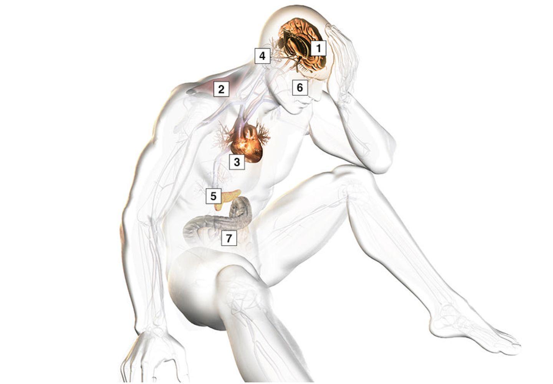 Die Folgen permanenter Anspannung auf den Körper