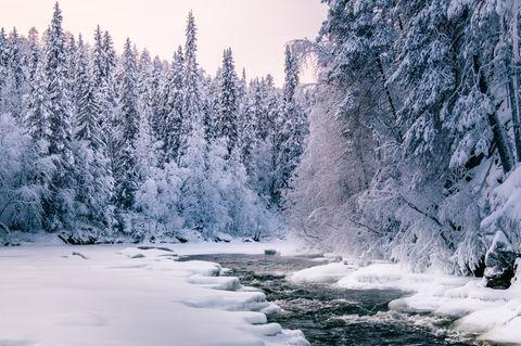 Oulangan Kansallispuisto, Finnland