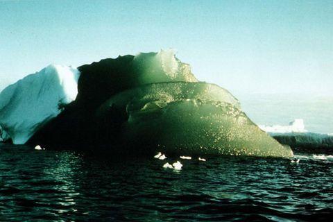 Grüne Eisscholle in Weddell Sea, Antarktis 16.02.1985