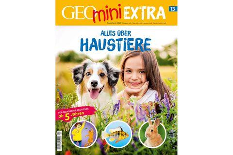GEOmini Extra