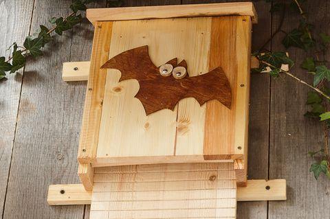 Fledermauskasten