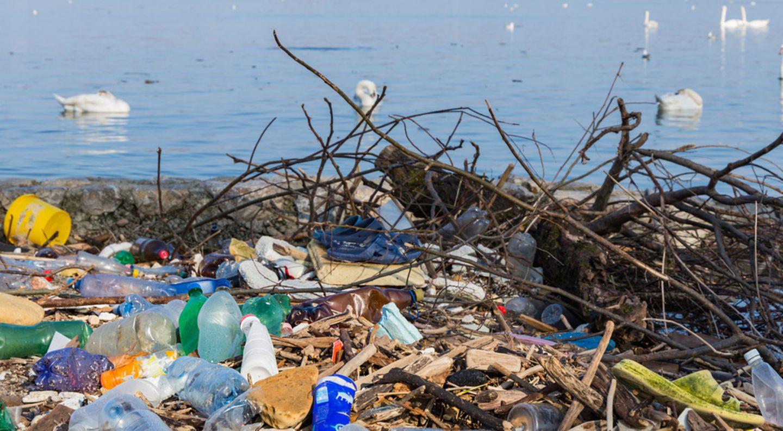 Plastikmüll an der Donau