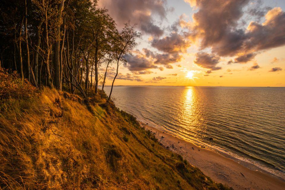 Wolin Nationalpark, Polen